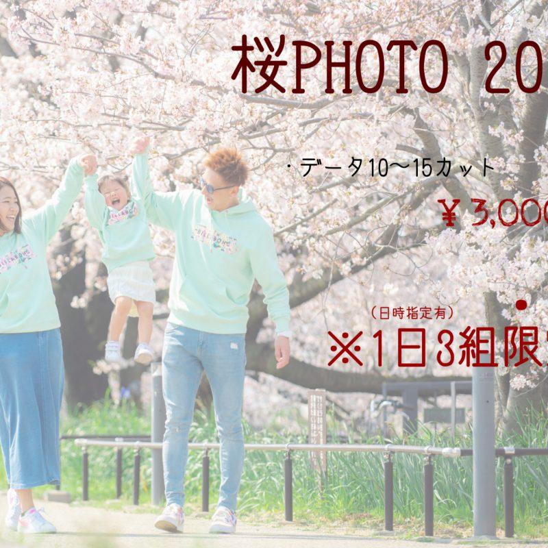 桜フォトキャンペーン