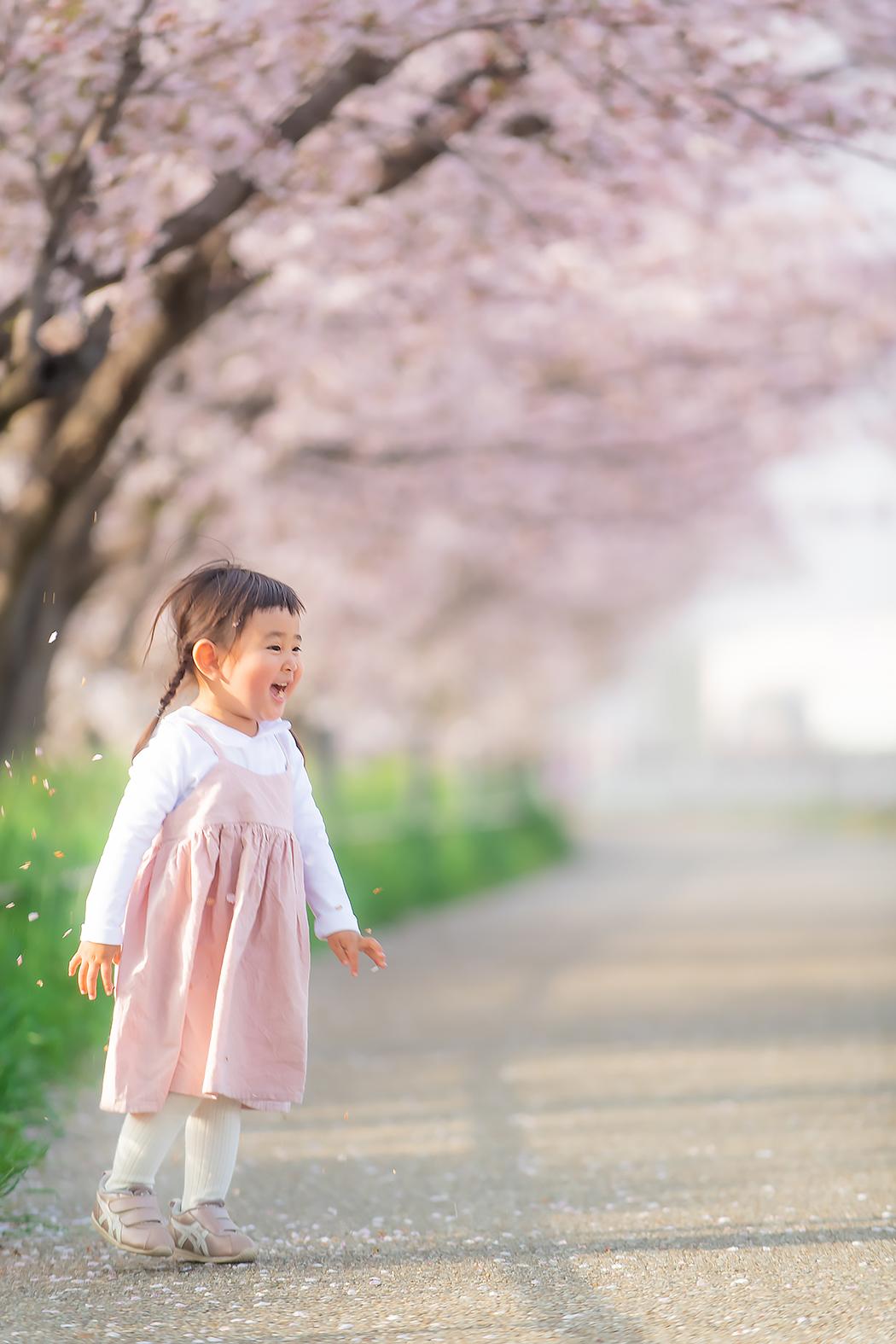 桜 桜フォトキャンペーン キャンペーン
